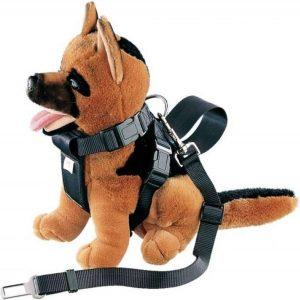 knuffel met een autogordel voor honden om
