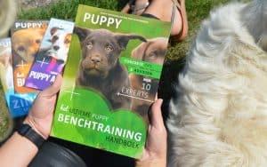 puppygroep boek over de benchtraining vastgehouden in een grasveld
