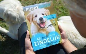 puppygroep boek over het zindelijk maken van je puppy vastgehouden in een grasveld