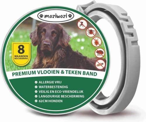 tekenband voor honden