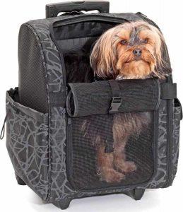 hond zit in een hondentrolley
