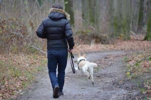 man loopt met een hond door een bos